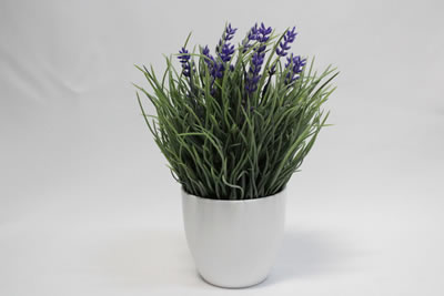 small round white pot with lavender